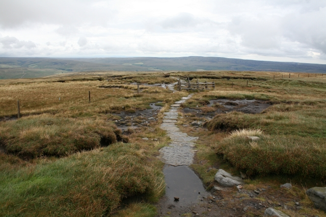 The Pennine Way Leaves Great Shunner Fell. - geograph.org.uk - 524322