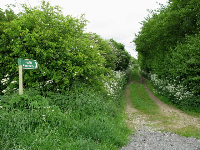 Towards Forge Valley - geograph.org.uk - 1326912