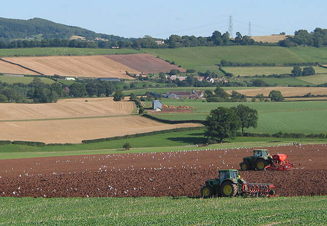 File:Tractor Teamwork - geograph.org.uk - 545872.jpg