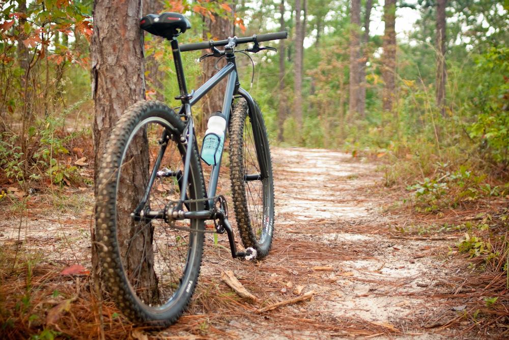 Cykla Mountainbike i skogen