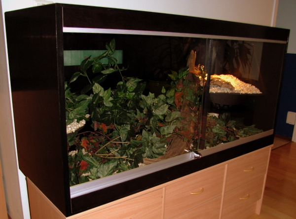 File:Vivarium with epoxy-coated plywood walls.jpg