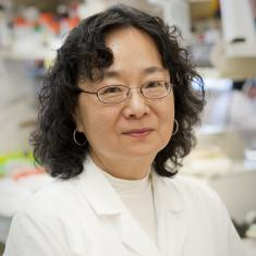 Wei-Shau Hu American geneticist