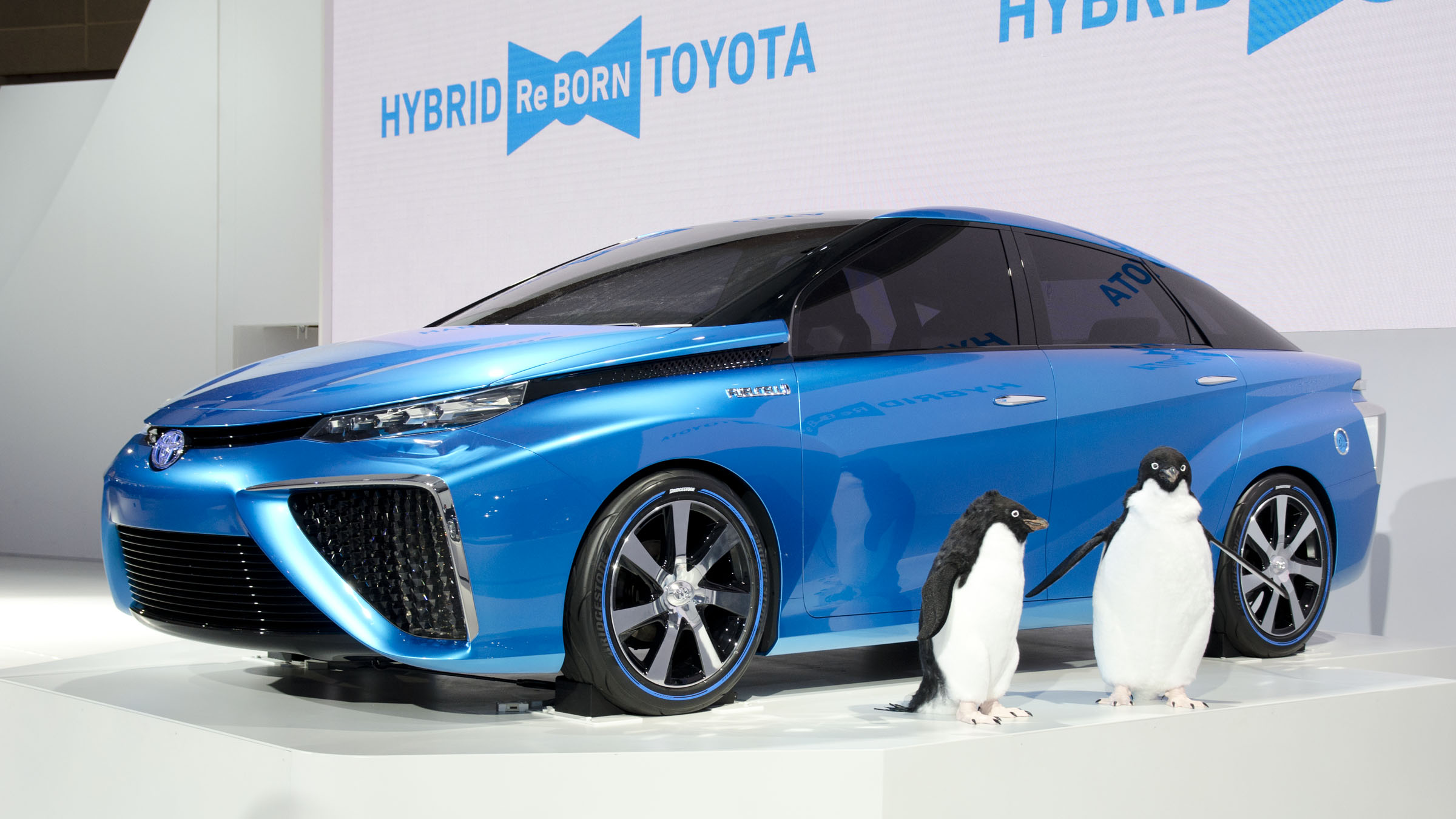 Hydrogen Cars: File:2013 Toyota FCV CONCEPT 01.jpg