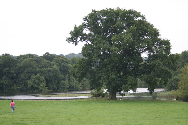 Berrington Pool - geograph.org.uk - 641782