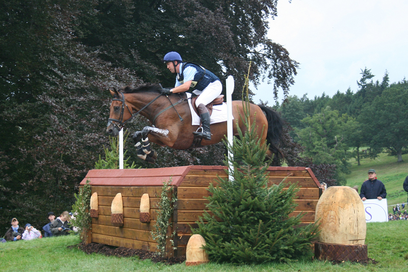 Horses jumping cross country - photo#9