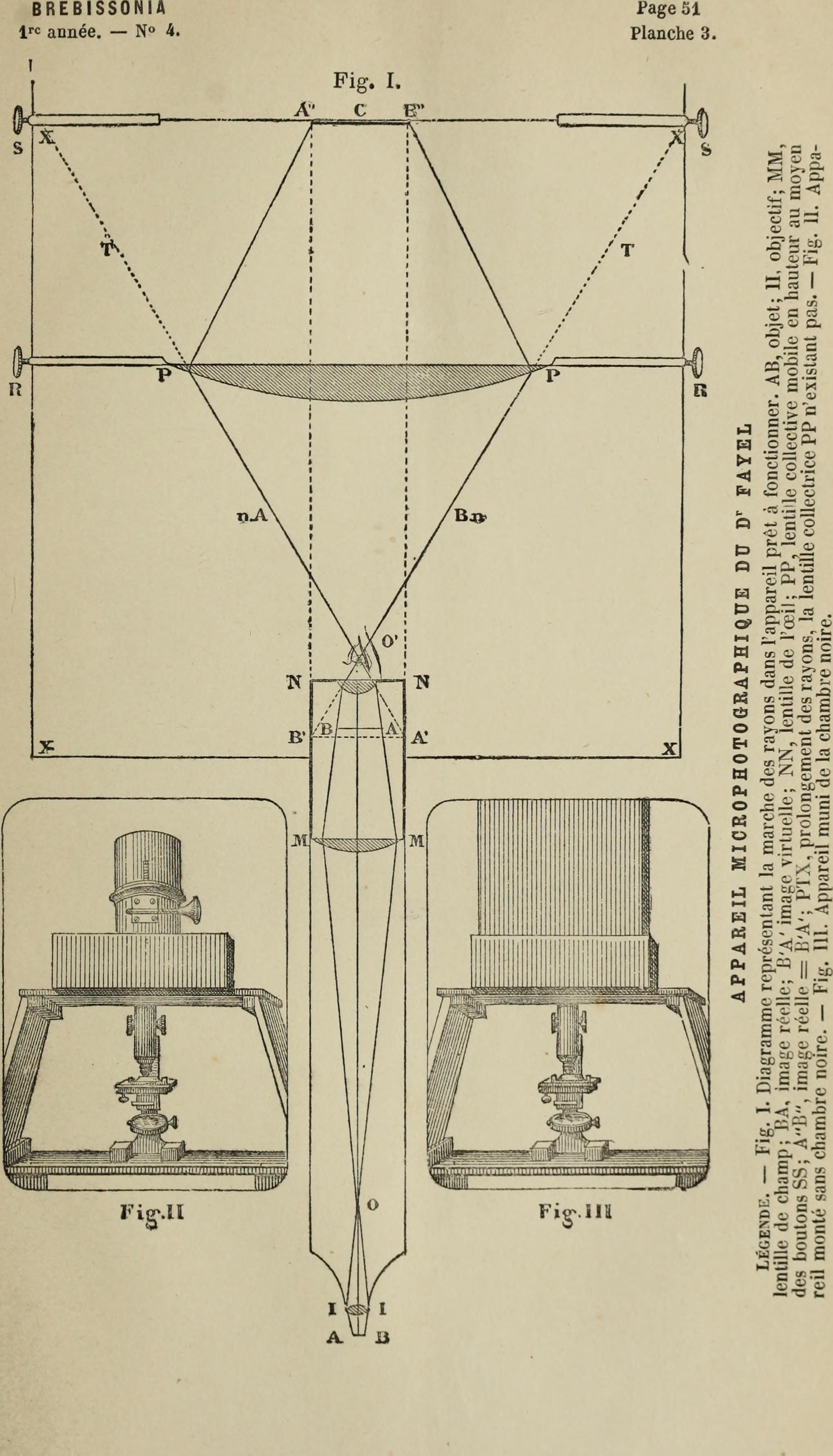 Ausgezeichnet Anatomie Und Physiologie Test Kapitel 1 Galerie ...