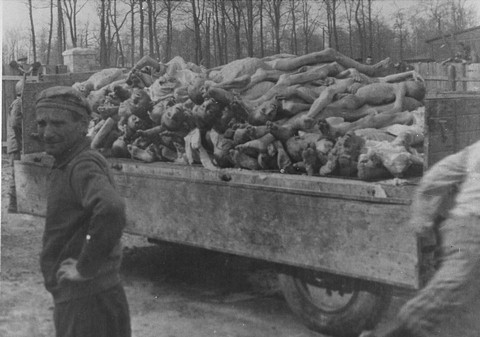 A description of the concentration camps as a big part of the holocaust