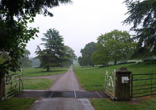 Cattle grid, Dillington House - geograph.org.uk - 1307301