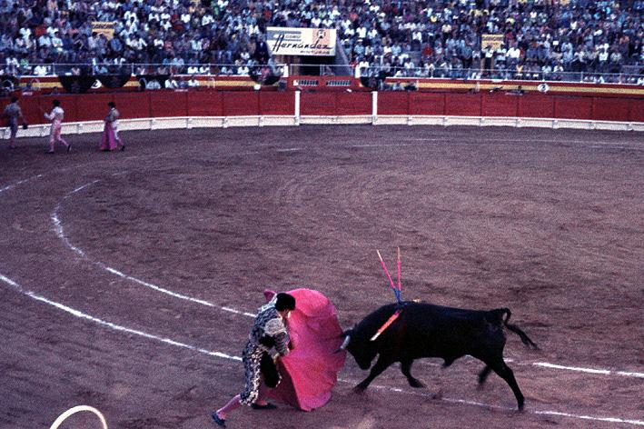 Depiction of Plaza de toros de Palma de Mallorca