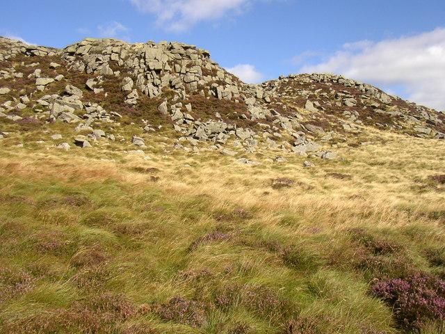Great Standrop, near Linhope, Ingram Valley - geograph.org.uk - 553061