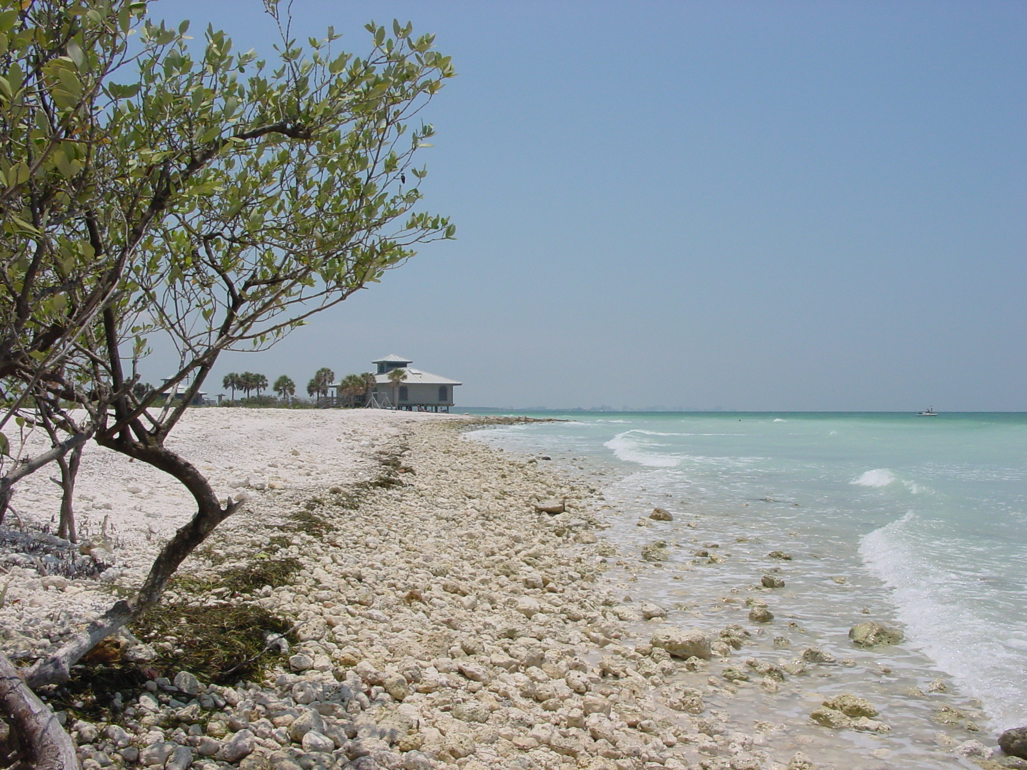 Clearwater Beach State Park Florida