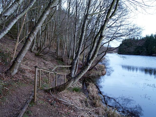Lochside path, Edgelaw Reservoir - geograph.org.uk - 711121