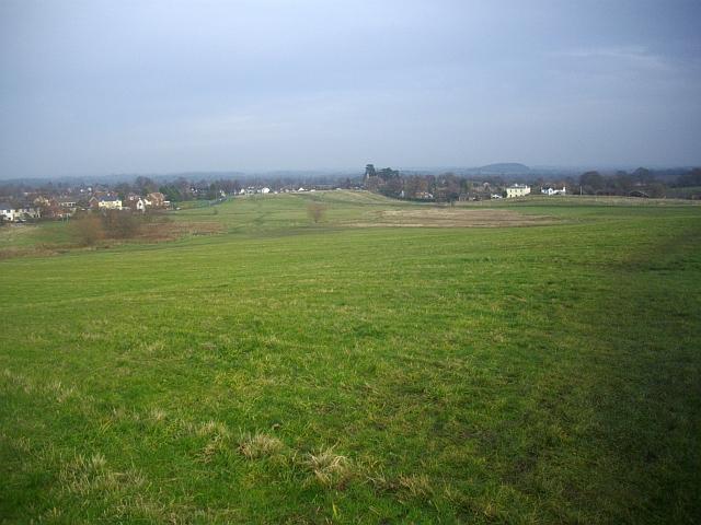 Malvern Common - geograph.org.uk - 1064884
