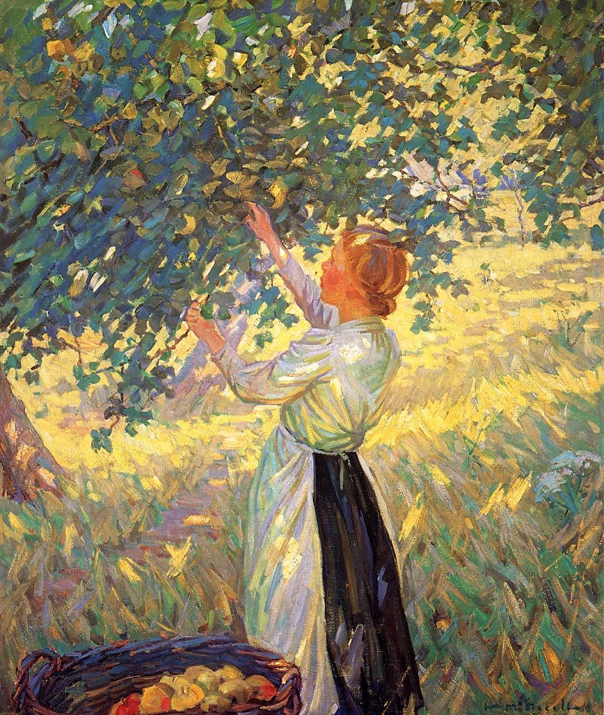 http://upload.wikimedia.org/wikipedia/commons/c/c9/McNicoll,Helen_Galloway-The_Apple_Gatherer.jpg