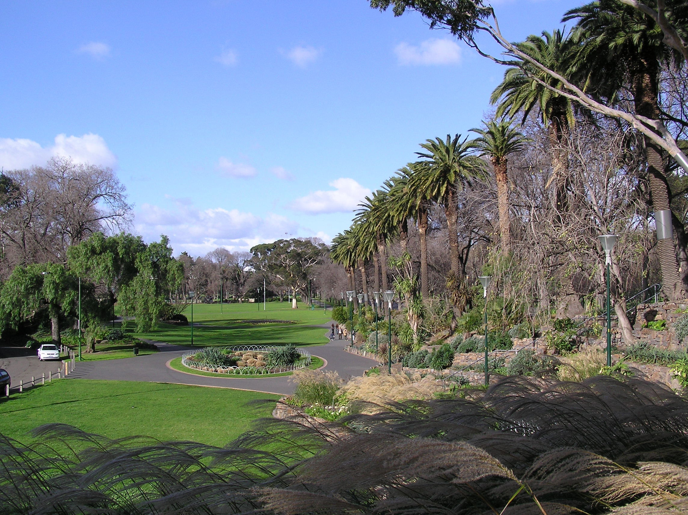 the history and purpose of the royal melbourne botanic garden rmbg Civil war music and video fall creek suttlery po a guide to festivals, concerts, movies, dances, theatrical a history and story of the 54th massachusetts infantry.