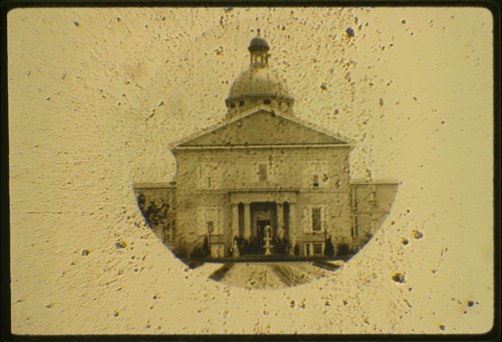 Microfotografía - Wikipedia, la enciclopedia libre