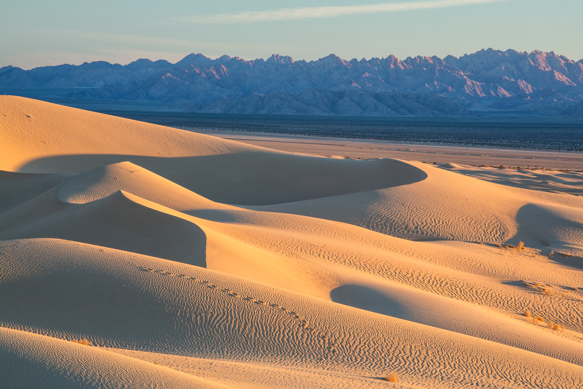 DateiMojave Trails National Monument dunes.jpg – Wikipedia