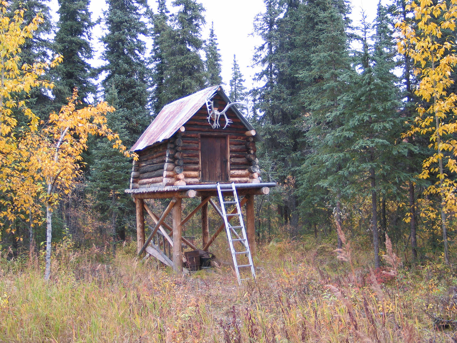 File moose creek shelter cabin wikimedia commons Log cabin homes on stilts