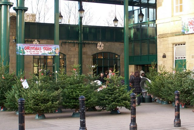 File:Morrisons Christmas Trees, Hillsborough Barracks, Sheffield -  geograph.org.uk - File:Morrisons Christmas Trees, Hillsborough Barracks, Sheffield