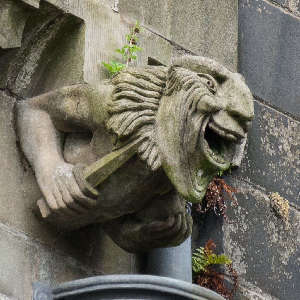 An Unusual Take on Gargoyles