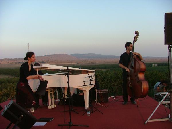 קונצרט בטבע