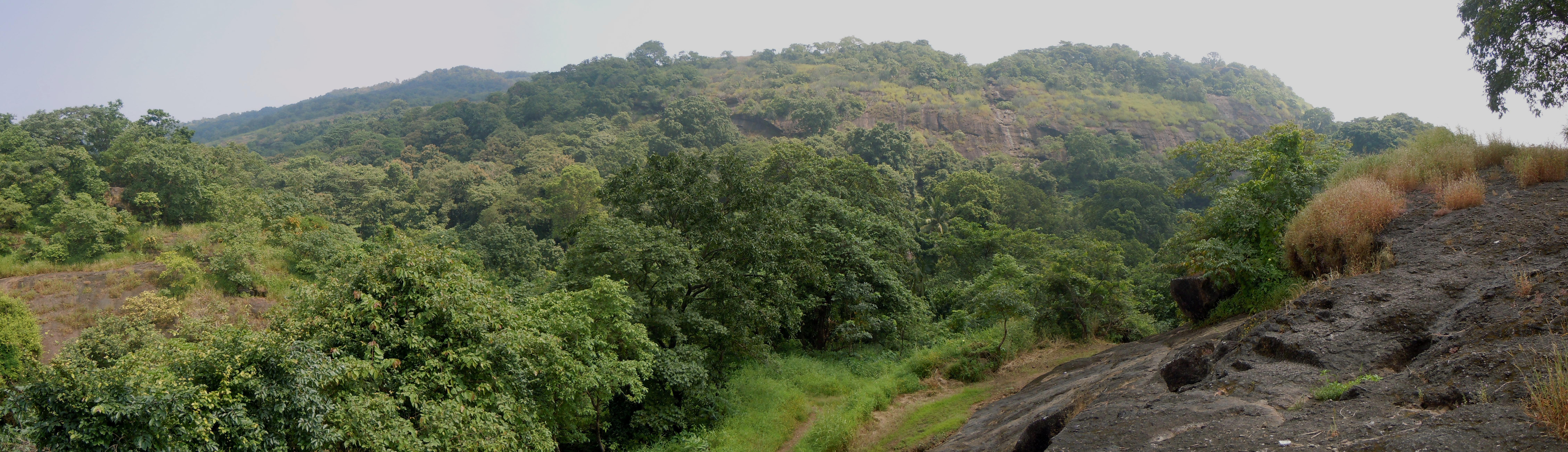 sanjay gandhi national park Reserva sanjay gandhi national park, bombay en tripadvisor: consulta 794 opiniones, artículos, y 901 fotos de sanjay gandhi national park, clasificada en tripadvisor.