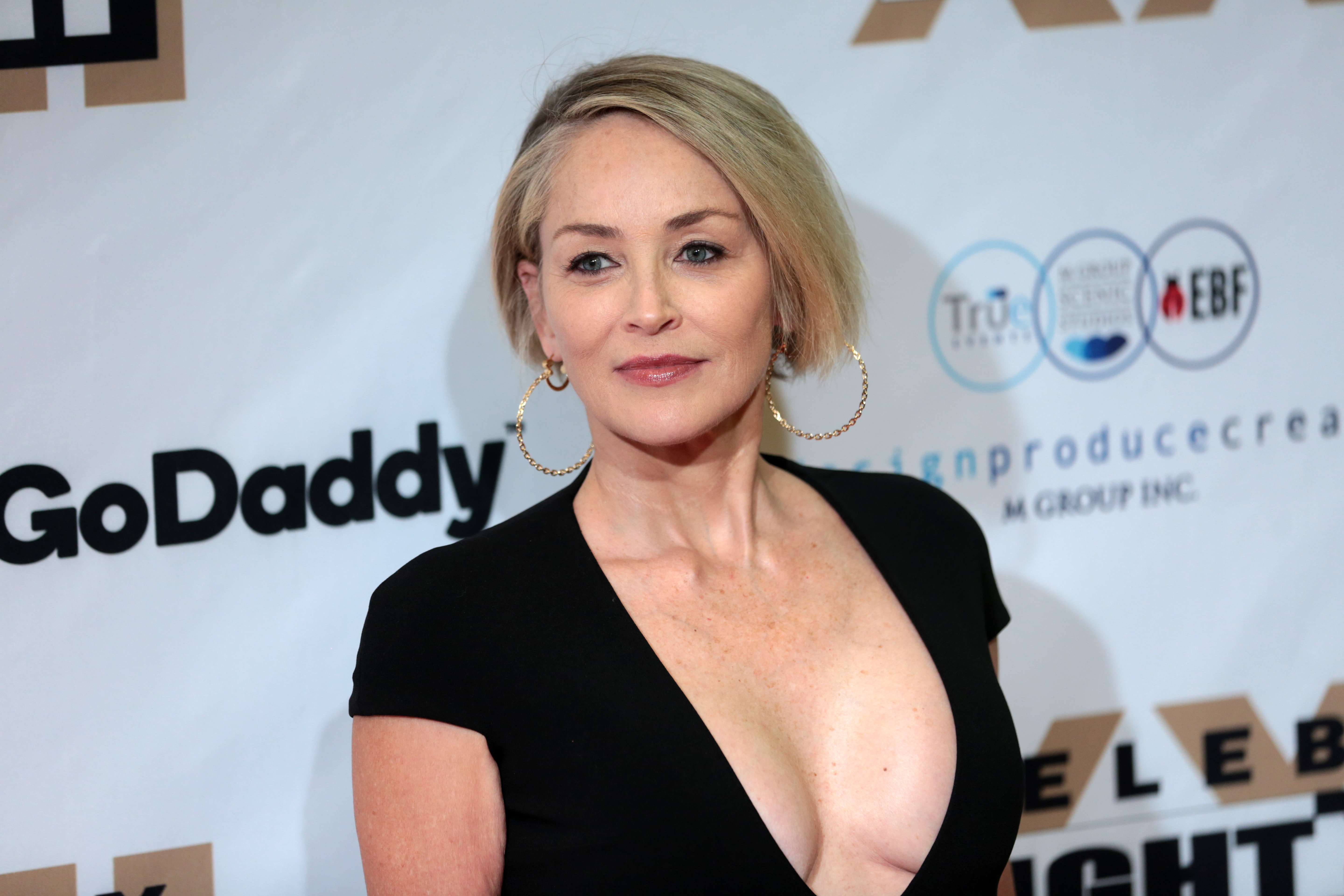 Fotos Sharon Stone nudes (22 photo), Pussy, Fappening, Twitter, panties 2015