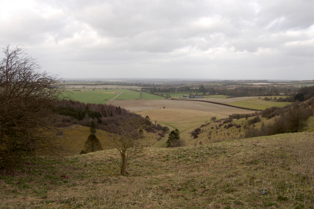 The Warren and White Hill - geograph.org.uk - 711994