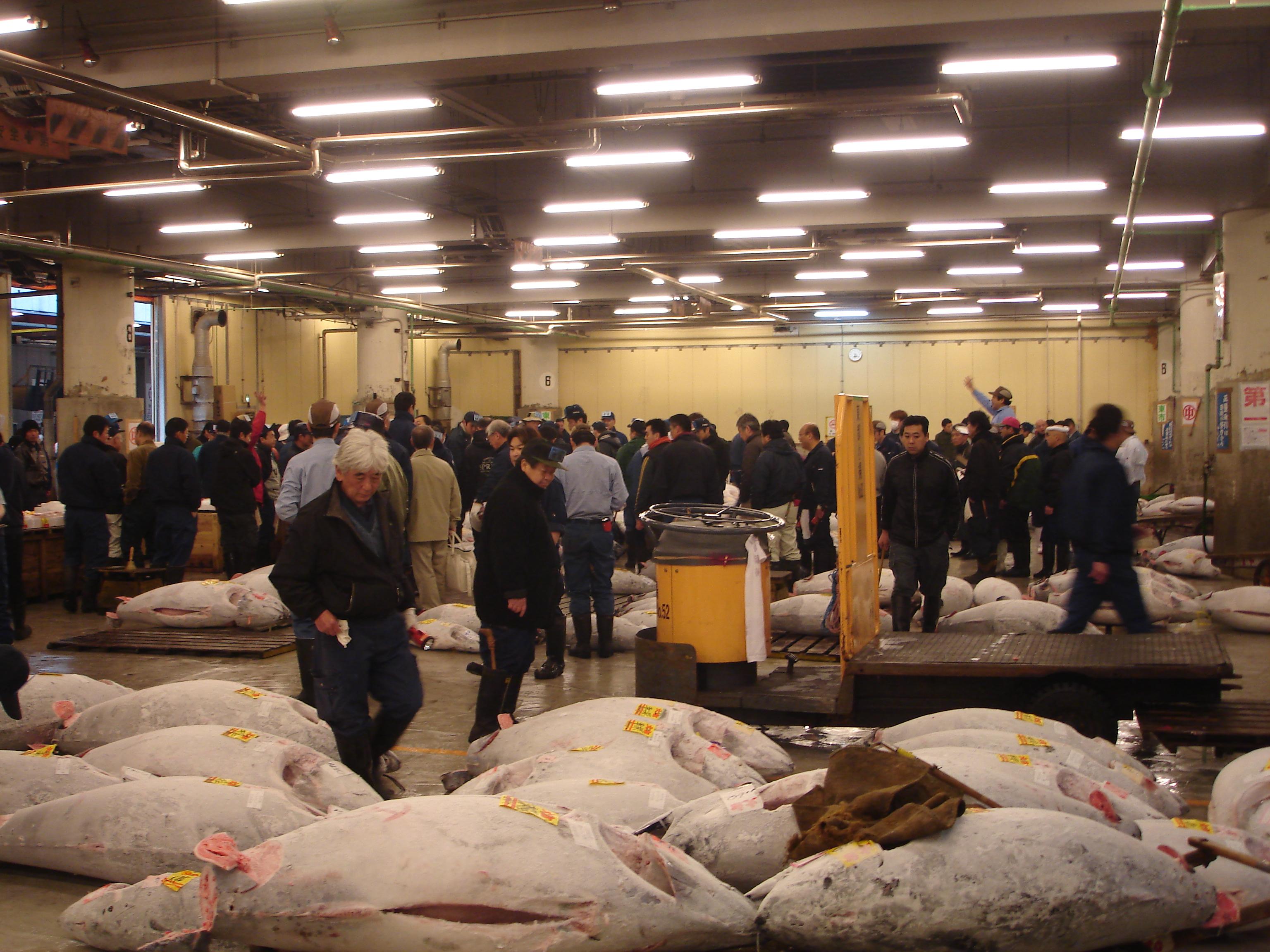 File tsukiji fish market for Tsukiji fish market