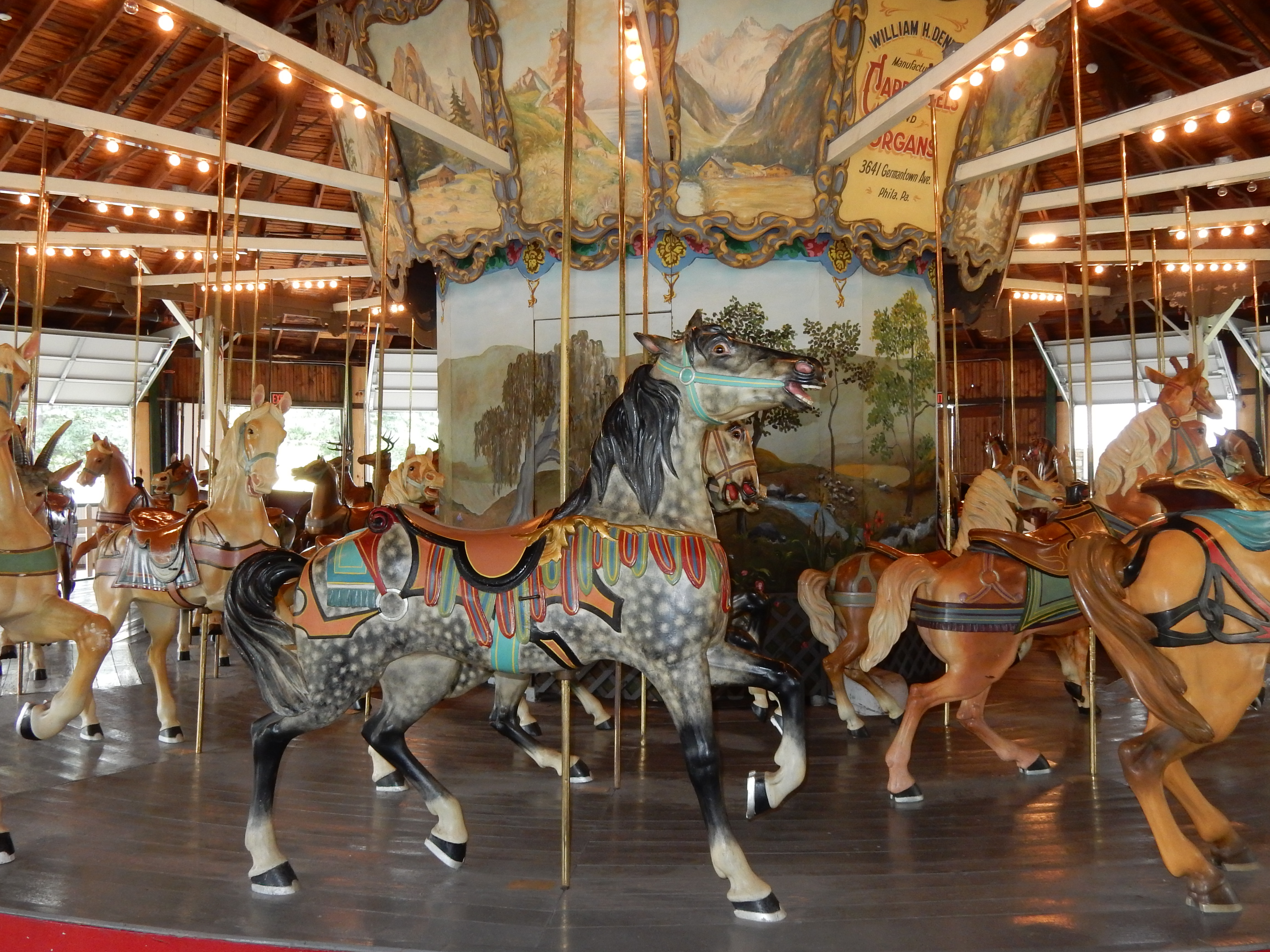 C Carousel