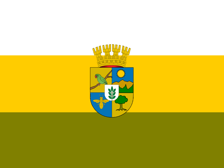 File:Bandera Requinoa.png
