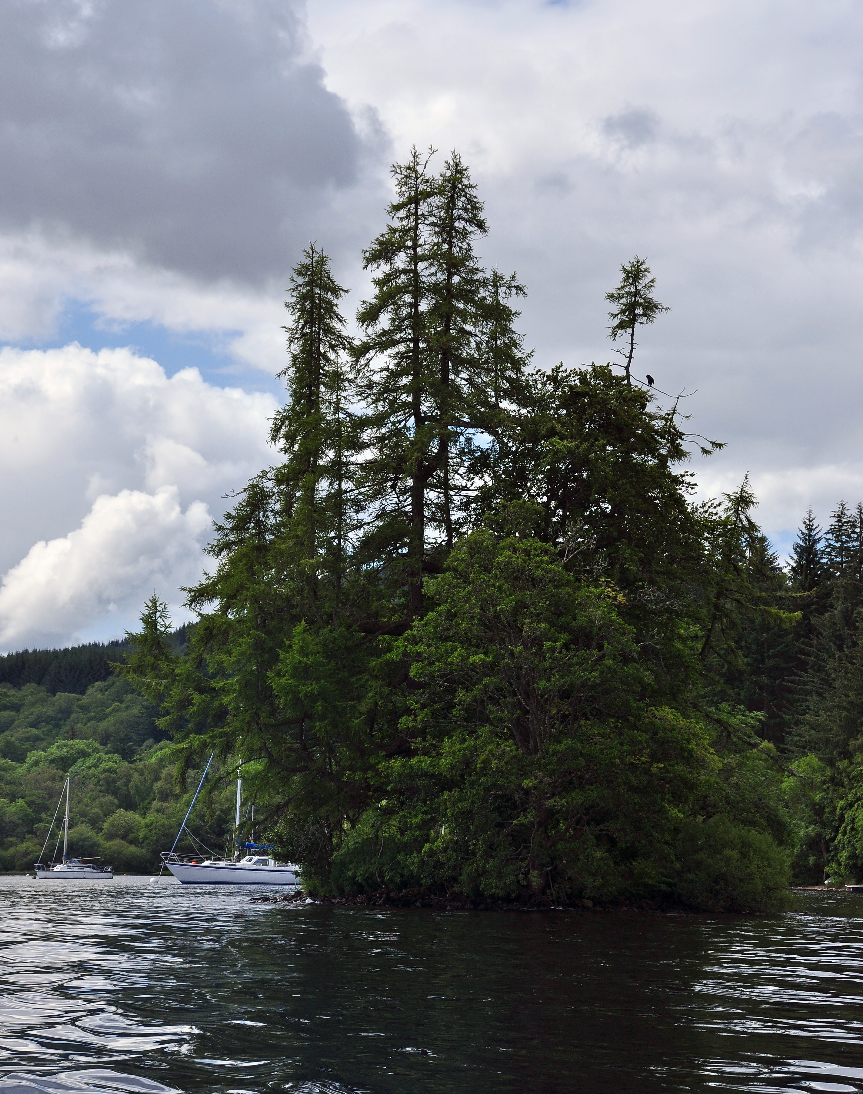 Island Loch Ness File:cherry Island Loch Ness