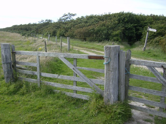 Edge of Brighstone Forest - geograph.org.uk - 502216