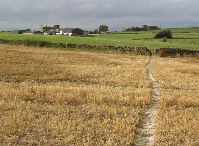Footpath, Farnley Tyas - geograph.org.uk - 564917