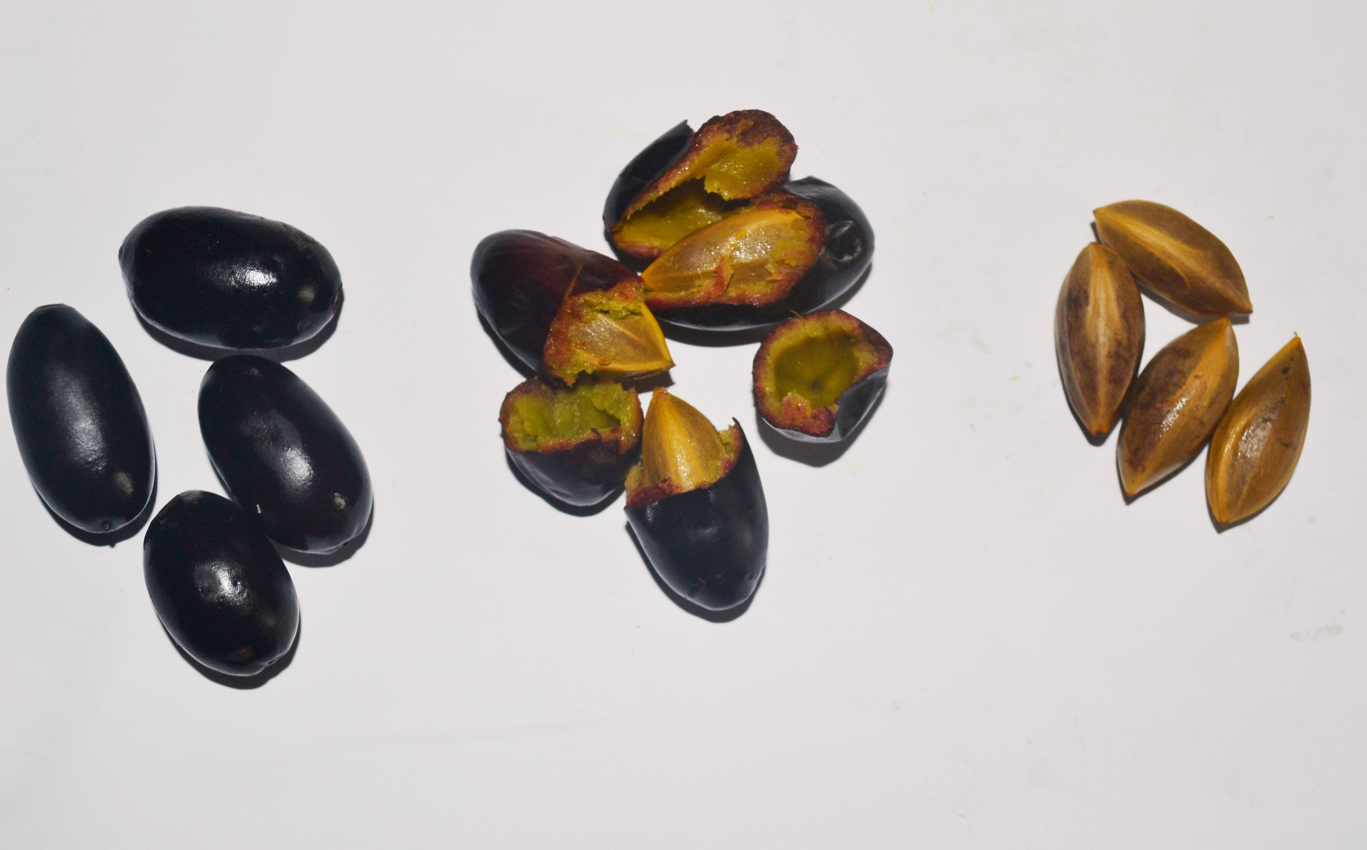 file fruit pulpe et noyau du canarium wikimedia commons. Black Bedroom Furniture Sets. Home Design Ideas