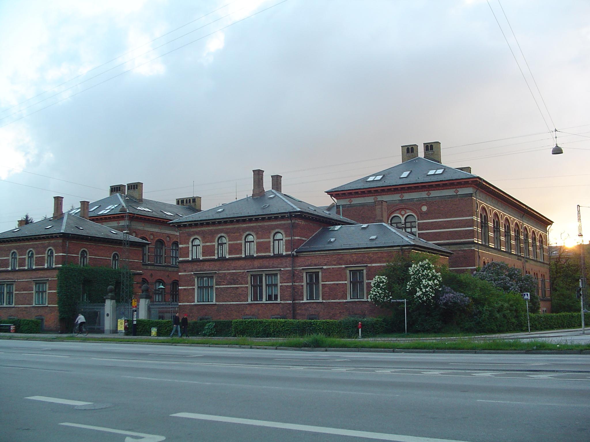vidz com geologisk museum København