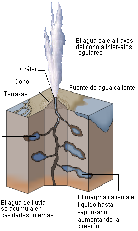 Electric+geyser+diagram
