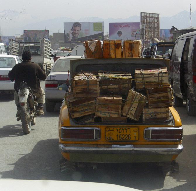 Curse of 39 Kabul_traffic