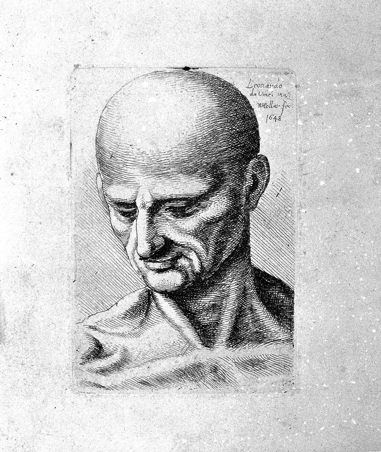 File:Leonardo da Vinci; engravings of some anatomical drawings ...