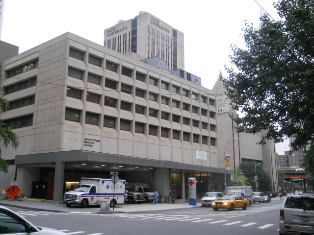 Lower Manhattan Hospital - Wikipedia