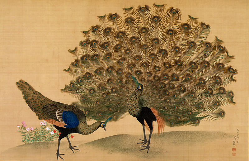 Okyo Peacock and Peahen.jpg