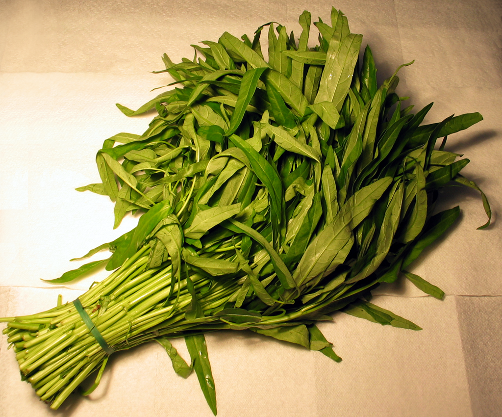 File:Ong choy water spinach.png - Wikipedia, the free encyclopedia
