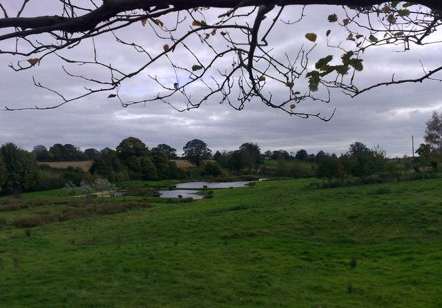 Ponds at Westbury - geograph.org.uk - 1013267