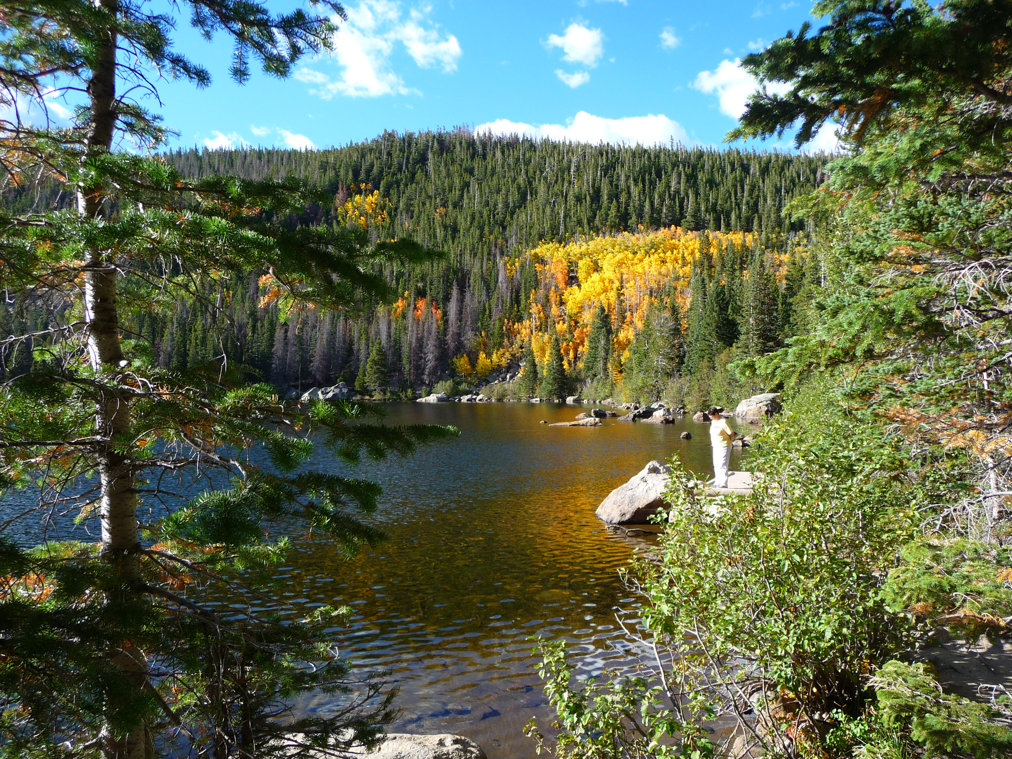 rocky mountain national park September 4, 2015 marks the 100th anniversary of the dedication of rocky mountain national park each year, more than 3 million people visit the park that protects mountains, tundra, meadows, wildlife, lakes, rivers and incredible scenery.