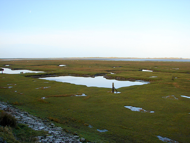 Saltmarsh at Morfa Mawddach - geograph.org.uk - 1087630