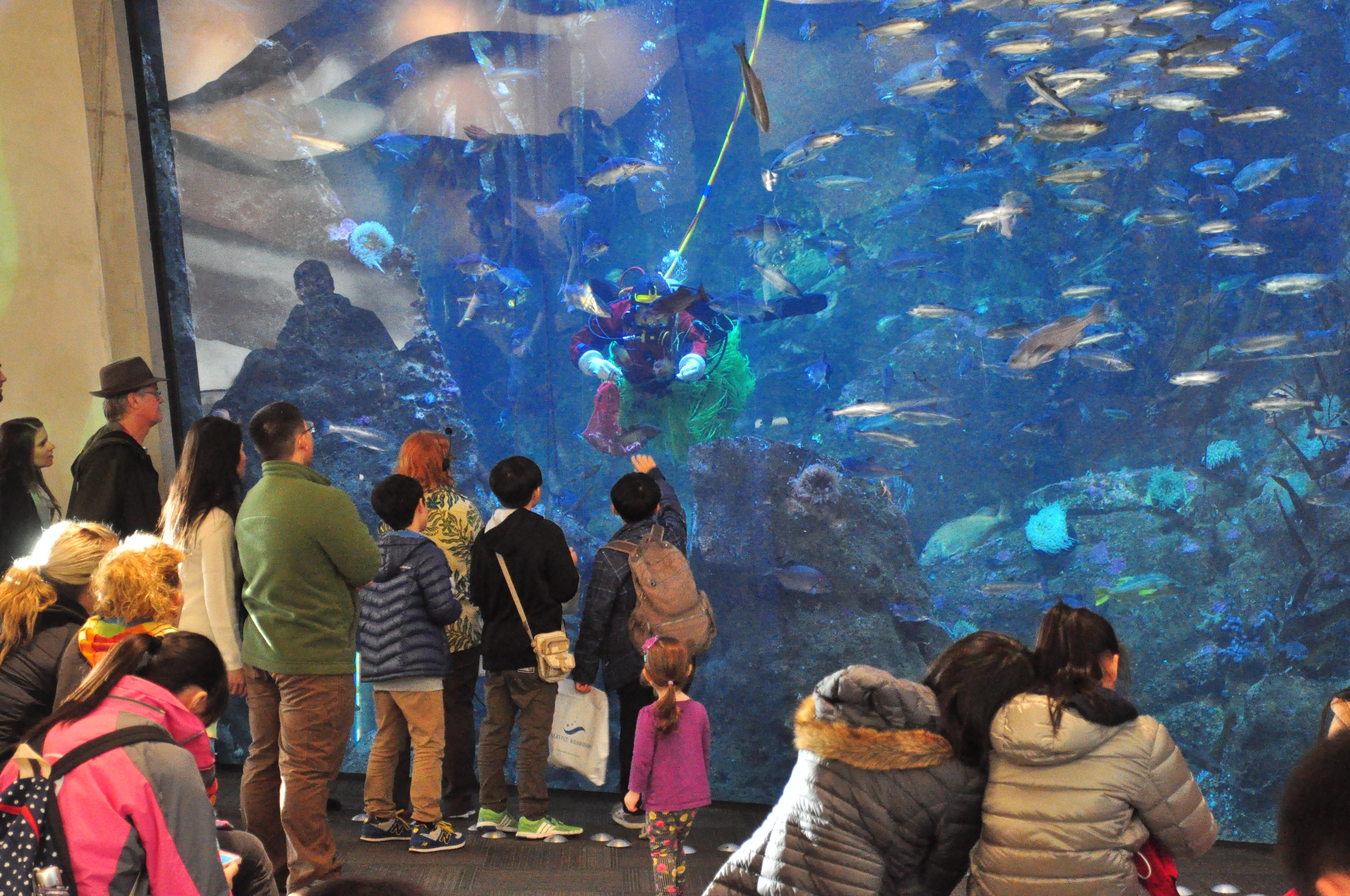 Image Result For Aquarium Seattle