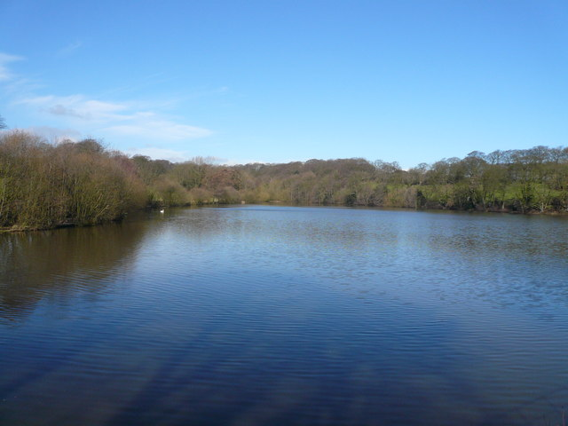Stubbing Great Pond - geograph.org.uk - 365048