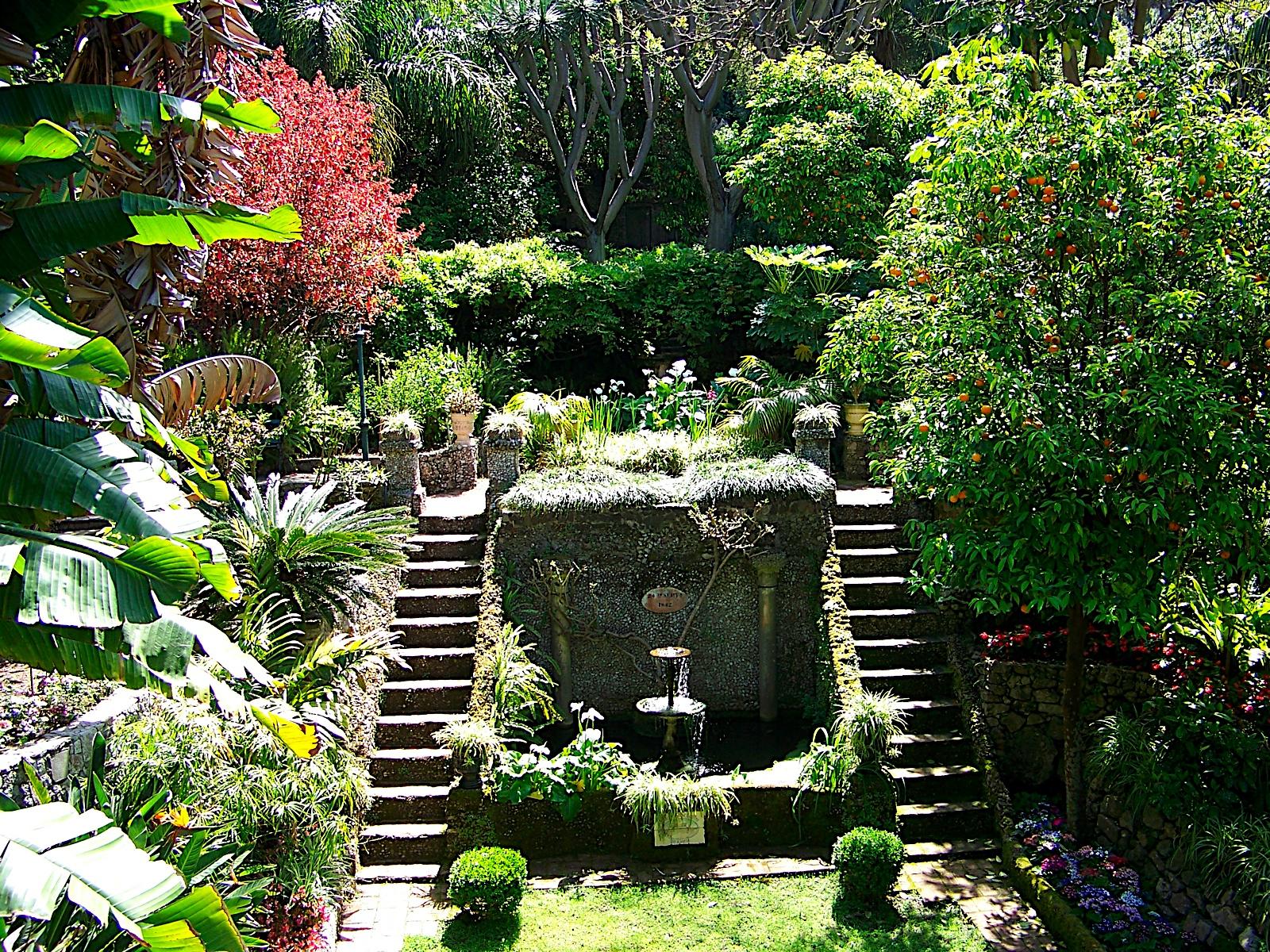 Delicieux File:The Dell, Gibraltar Botanic Gardens 4