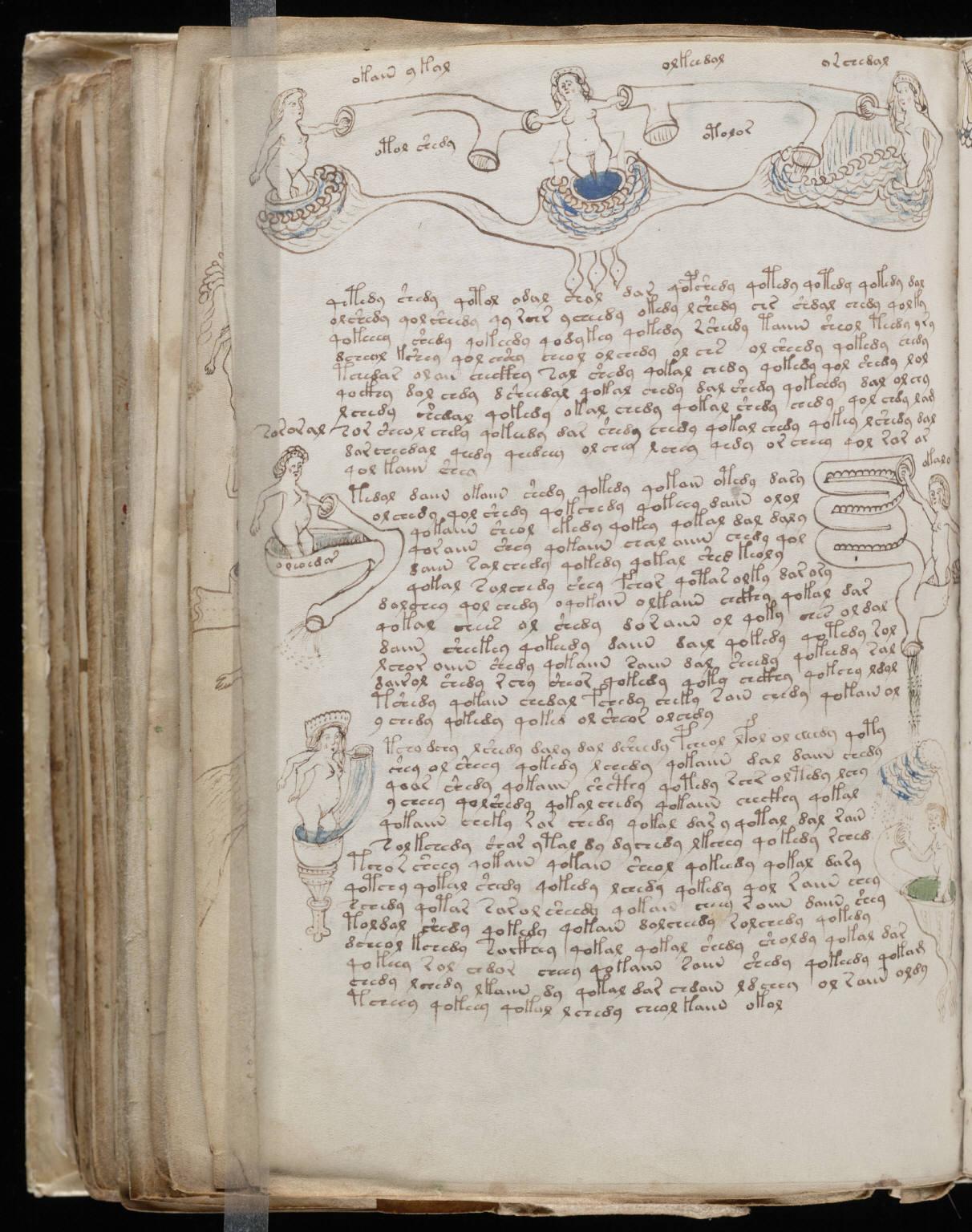 The Voynich Manuscript Decoded File Voynich Manuscript 140