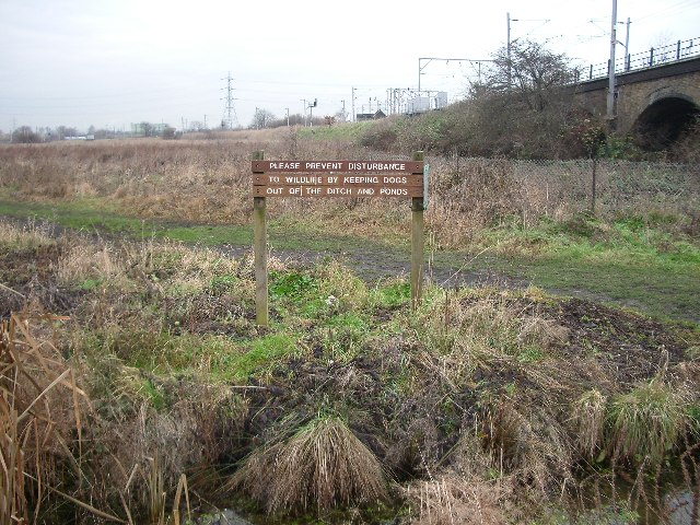 Walthamstow Marshes - geograph.org.uk - 93325